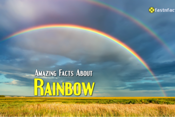 Amazing Facts About Rainbow