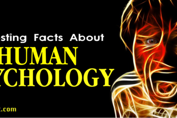 Interesting Facts About Human Psychology