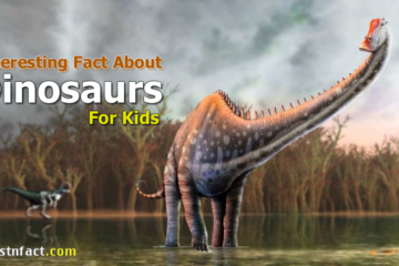 Interesting Dinosaurs Facts for Kids